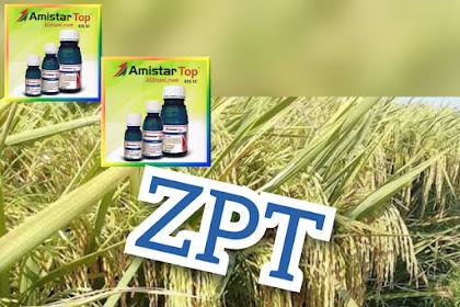 5 Fungsi ZPT Bagi Tanaman, yang bikin tanaman tumbuh sehat