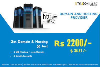 Domain and Hosting Provider
