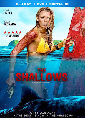 The Shallows 2016 Dual Audio 720p BRRip 400MB HEVC x265 world4ufree.ws hollywood movie The Shallows 2016 hindi dubbed dual audio world4ufree.ws english hindi audio 720p hdrip free download or watch online at world4ufree.ws