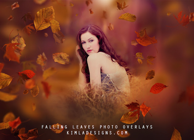 https://2.bp.blogspot.com/-vid4w6REzzg/WBsyB3pIfQI/AAAAAAAACnw/EcVcM8MSjRw5eK43i__StEr-mGN8xRfwQCEw/s640/Falling-Leaves-Photo-Overlays-Kimla-Designs.jpg