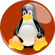 How to Check the Environment Variables for an Oracle Process In Linux