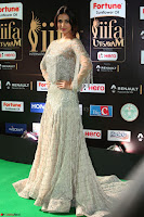 Sonal Chauhan in a stonework Floor Length Silver Designer Gown at IIFA Utsavam Awards March 2017 031.JPG