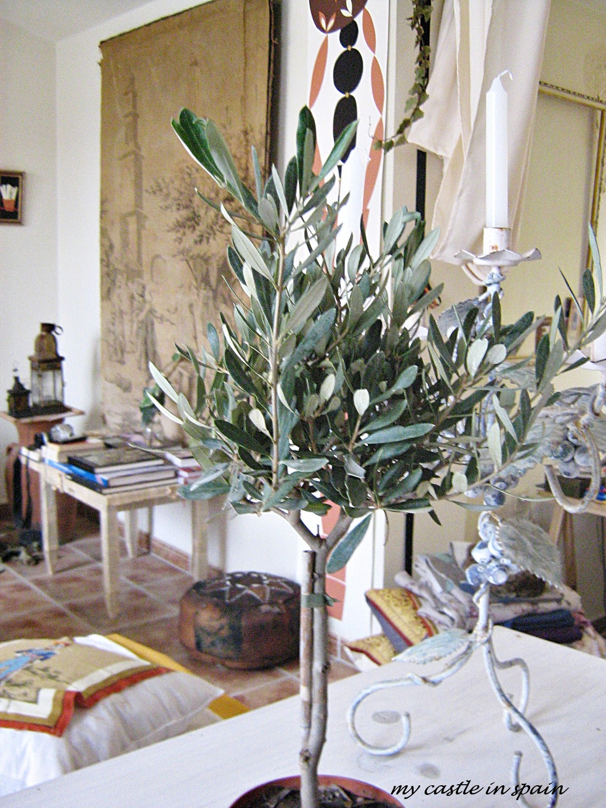I Bought This Cute Minature Olive Tree Morning To Decorate My Christmas Table