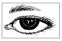 Basa Krama Inggile Perangane Awak ( Bahasa Krama Inggile Anggota Tubuh)
