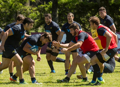 Los Pumas arrancaron su semana pensando en All Blacks