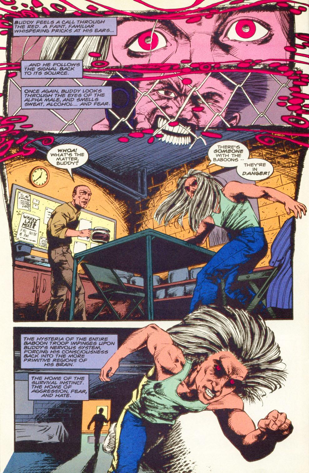 Read online Animal Man (1988) comic -  Issue #83 - 11