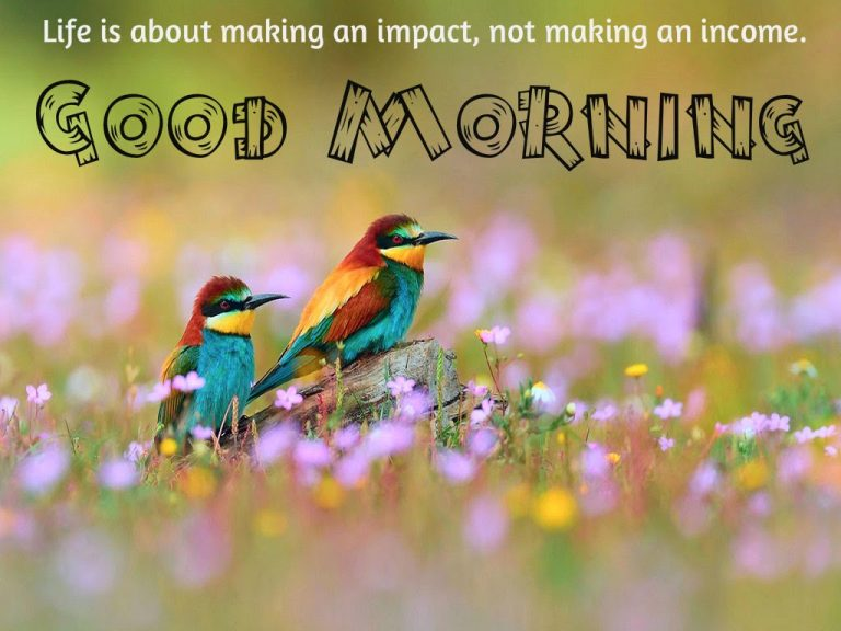 birds good morning images with quotes