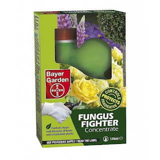 Bayer fungus fighter gun for treatment of blackspot on roses.