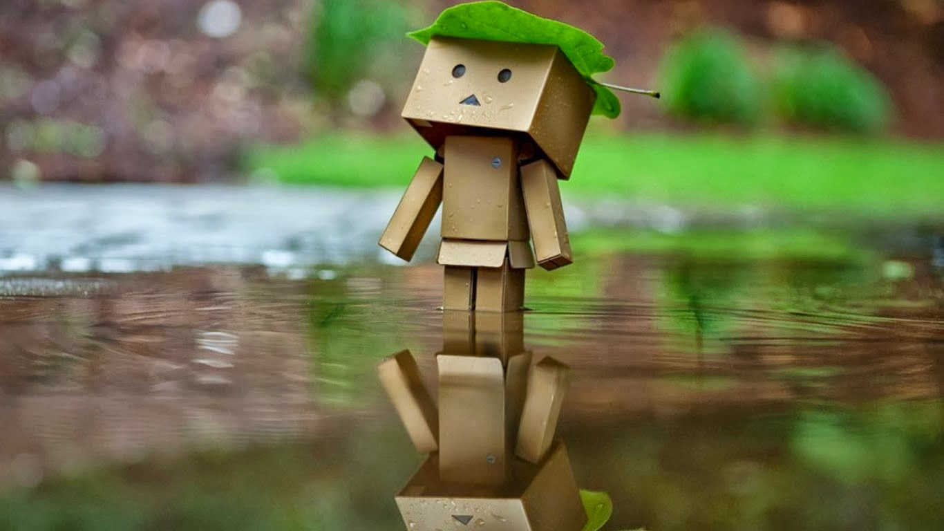 Photo - cute Danbo Wallpaper full HD | Gallery Wallpaper HD