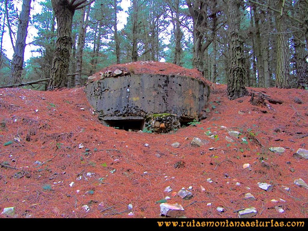 Rutas Montaña Asturias: Nido de ametralladora cerca del pico Pedroso
