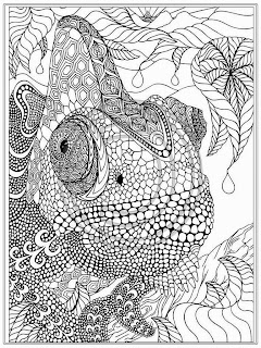 Free Iguana Coloring Pages For Adult