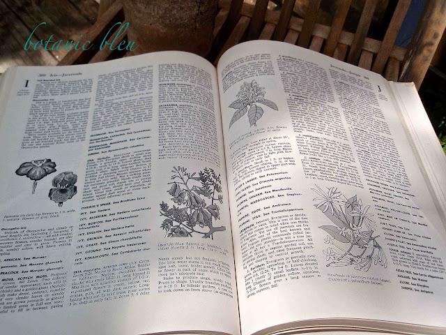 vintage-garden-dictionary
