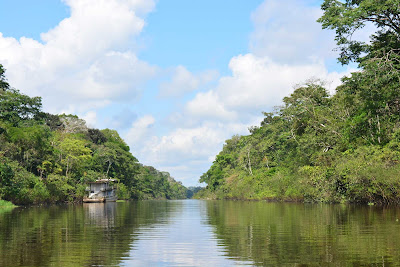 Amazon Cruises, Pacaya Samiria Luxury Cruises