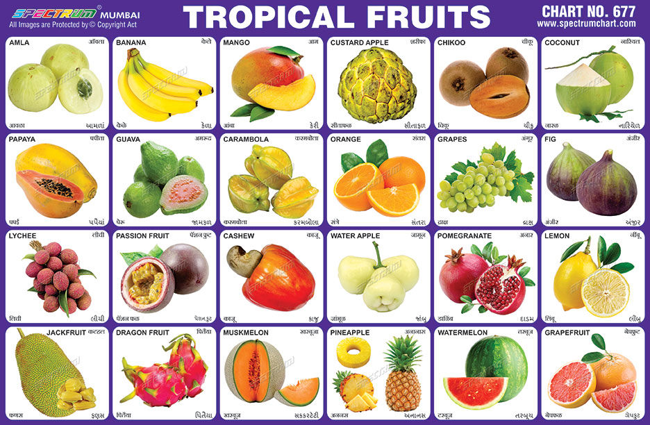 Spectrum Educational Charts: Chart 677 - Tropical Fruits