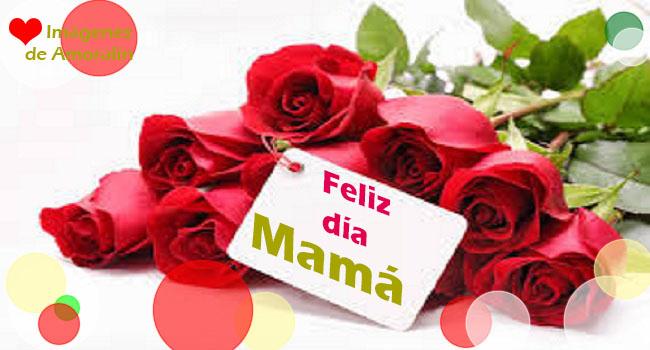 Imágenes Para El Dia De La Madre Bonitas Rosas De Amor Imágenes