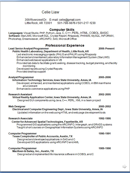 lead senior analyst programmer sample resume format in