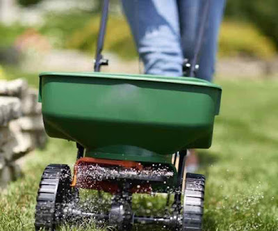 Fertilizing your lawn with Scott seed spreader - www.leovandesign.com