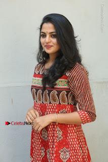 Telugu Actress Nikhila Vimal Latest Stills in Anarkali Dress  0033.JPG