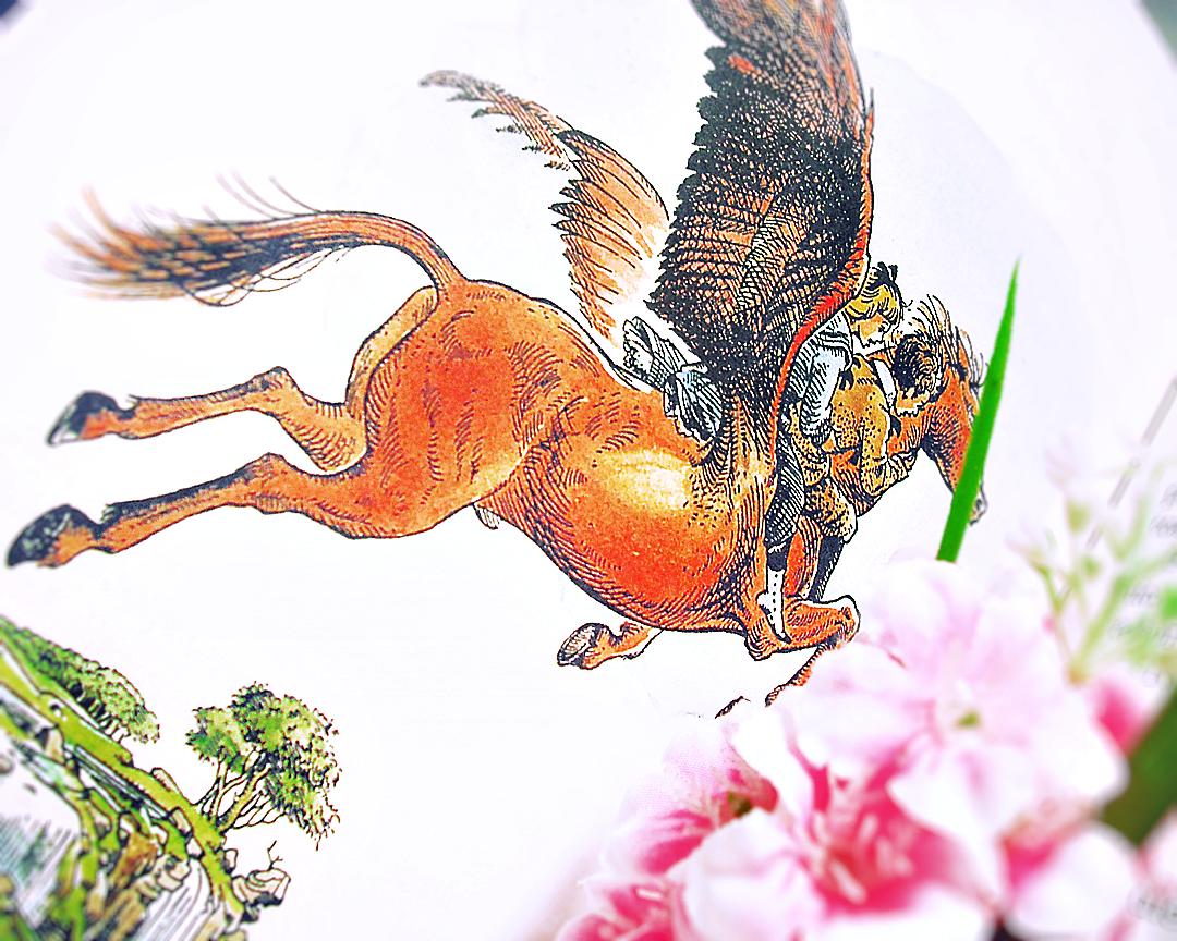 Cronicile din Narnia - C.S Lewis - Nepotul magicianului - Leul, vrajitoarea si dulapul - The Chronicles of Narnia - The Magician's Nephew - The Lion, the witch and the wardrobe - review pareri books bookish bookstagram bookstagrammer