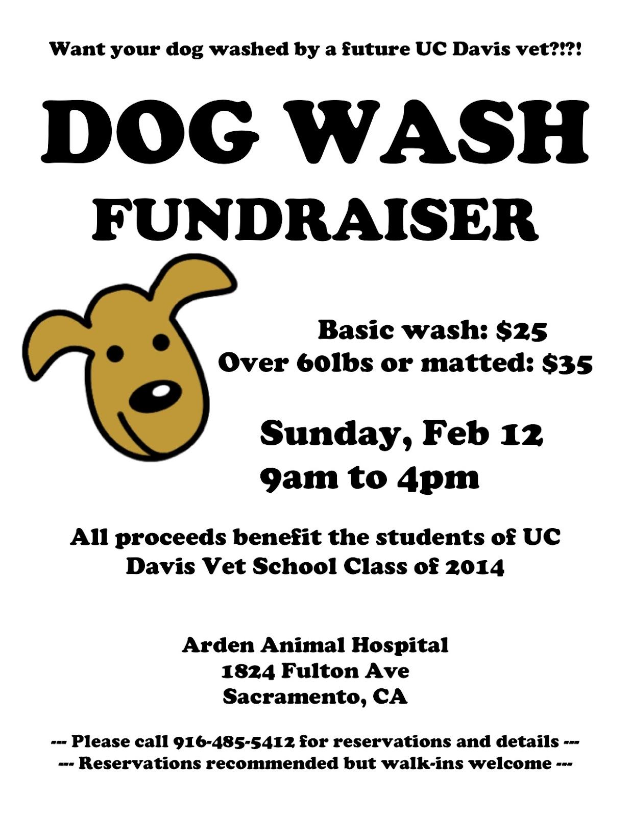 all squared up: UC Davis Dog Wash Fundraiser