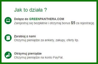 GreenPanthera - płatne ankiety, panel ankietowy