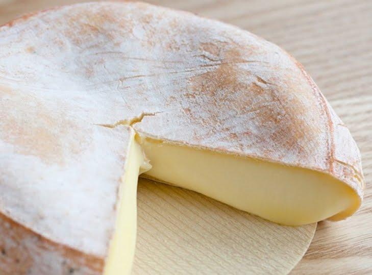 Salute News: Mangiano del formaggio e 7 bambini si beccano la Escherichia Coli