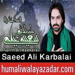 http://www.humaliwalayazadar.com/2013/06/saeed-ali-karbalai-nohay-2011-2013.html