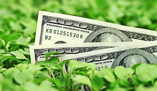 История зеленых облигация