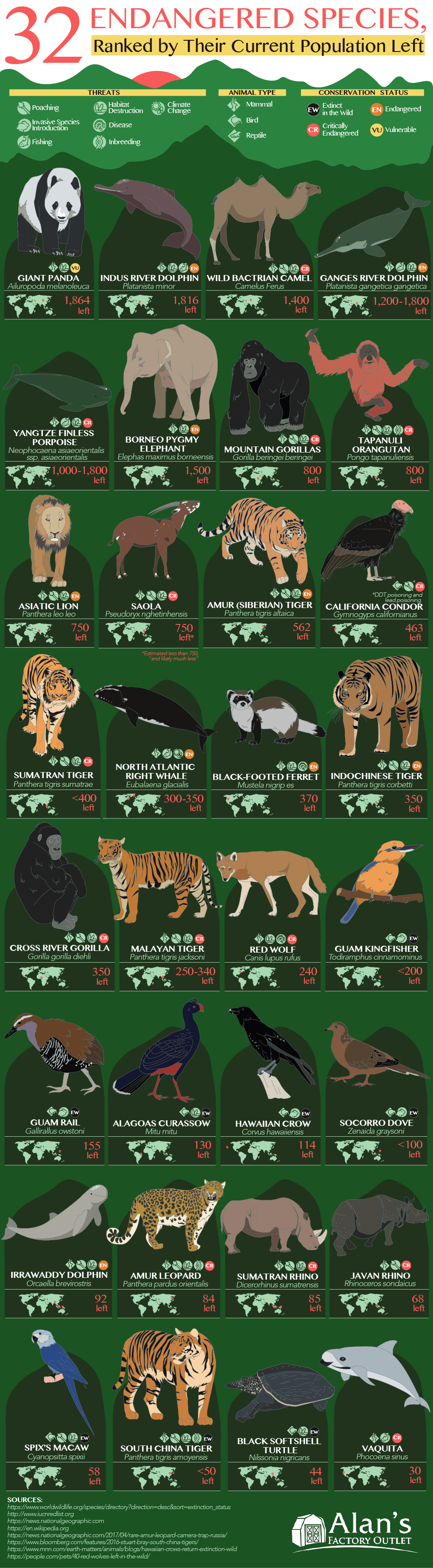 32 Animals That Are Going to Be Extinct Soon (Endangered Species Ranked by Current Population Left)