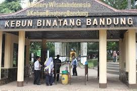 Kebun Binatang Bandung | Tempat Wisata di Bandung