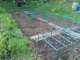Allotment protected by netting