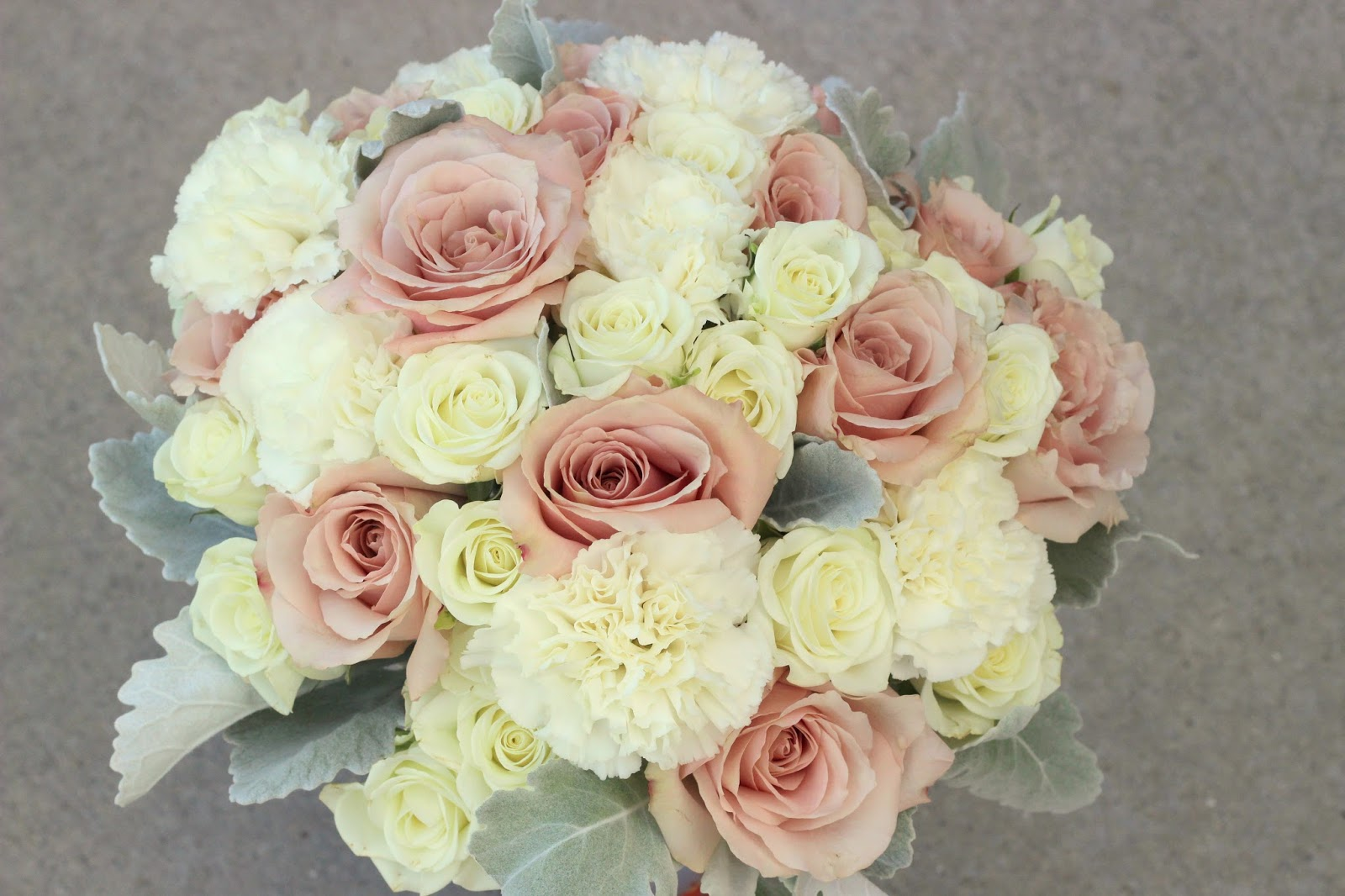 Champagne Carnations Marriage Flower Love Pictures Www