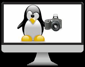 Pinguim mascote do Linux conhecido como Tux, dentro de uma tela de monitor segurando uma câmera fotográfica