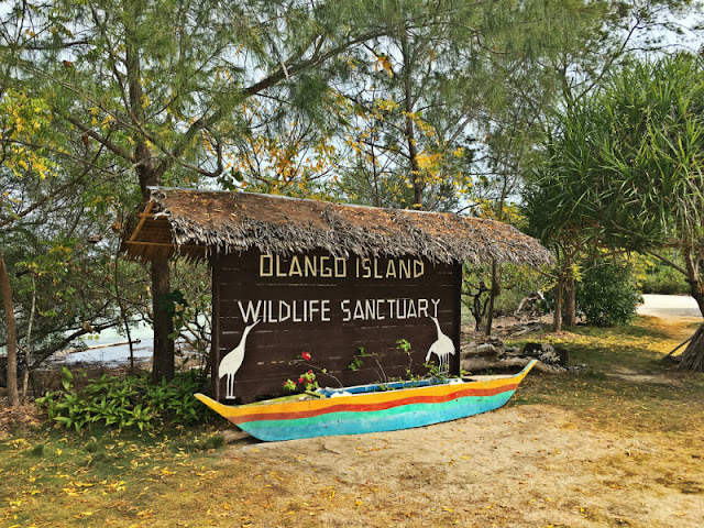 Olango Wildlife Sancturary - San Vicente, Olango Island, Lapu-Lapu City, Cebu