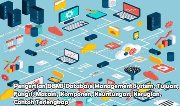 Pengertian DBMS Database Management System, Tujuan, Fungsi, Macam, Komponen, Keuntungan, Kerugian, Contoh Terlengkap