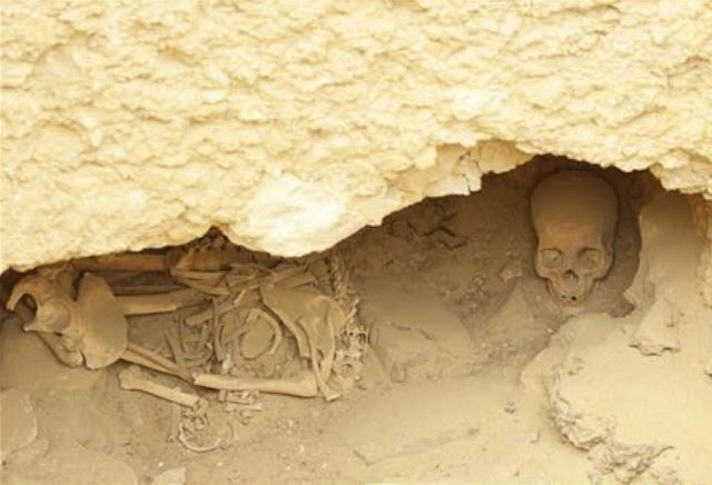 Egypt tombs suggest pyramids not built by slaves