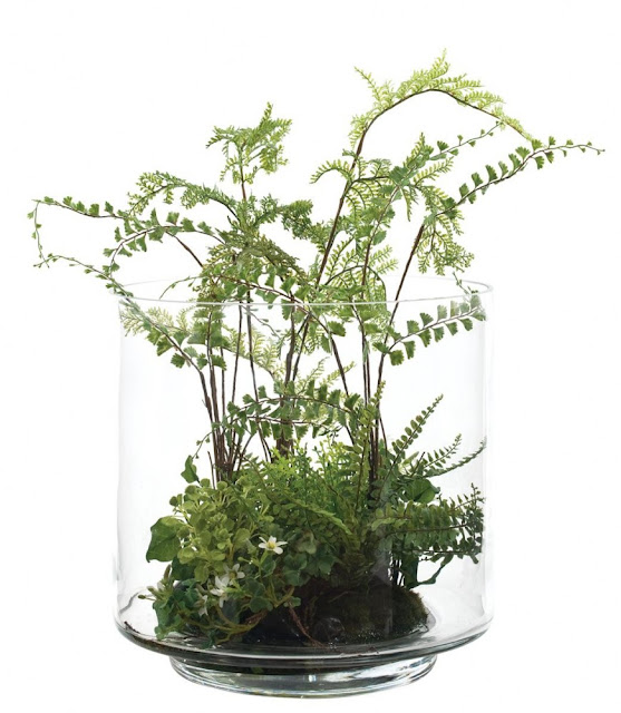 Silk fern terrarium by NDI