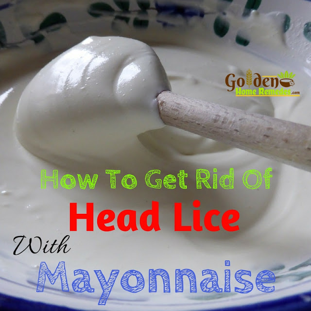 Mayonnaise For Lice, Mayonnaise For Head Lice, Mayonnaise Head Lice, Can Mayonnaise Kill Head Lice, Mayonnaise And Head Lice, Is Mayonnaise Good For Lice, Does Mayonnaise Work For Head Lice, Is Mayonnaise Good For Head Lice, How To Use Mayonnaise For Head Lice,