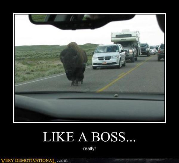 Funny Image Clip: Funny Demotivational Posters funny ...