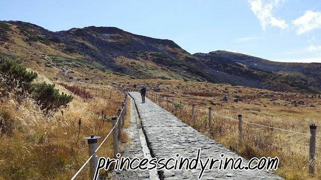 man walking towards hills