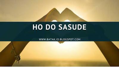 Lirik Ho Do Sasude