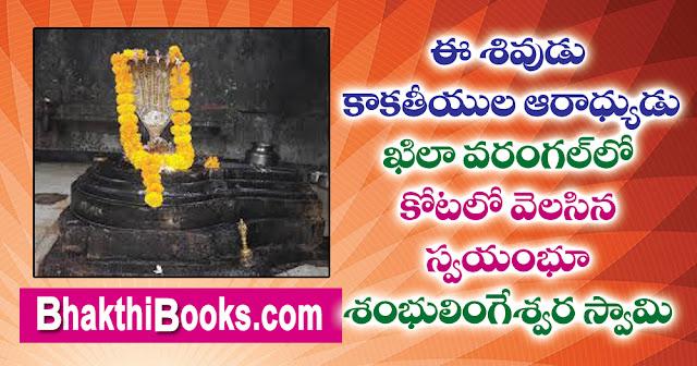 ఈ శివుడు   కాకతీయుల ఆరాధ్యుడు  శ్రీ శంభులింగేశ్వరస్వామి   ఖిలా వరంగల్ కోట  Sri ShambhulingeswaraSwamy Khila Warangal Fort
