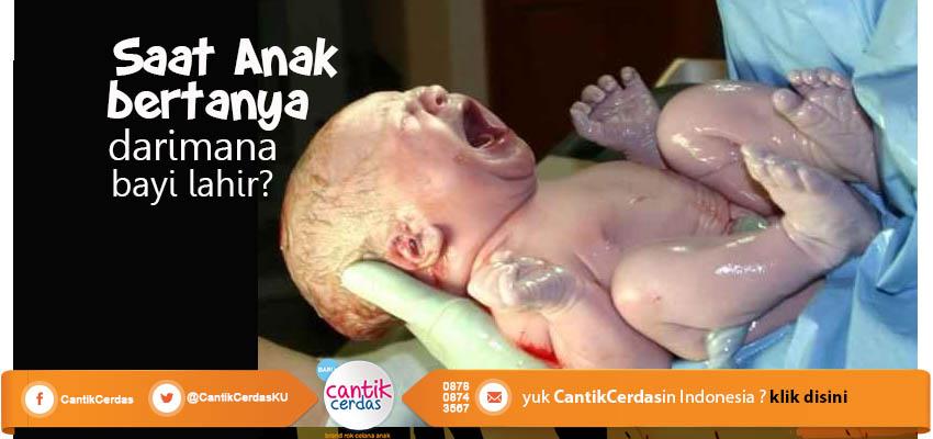 Saat Anak Bertanya : Darimana Bayi Lahir?