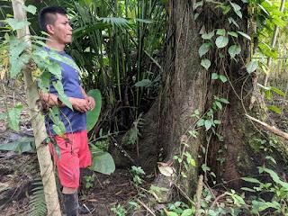 Kichwa canoe builder