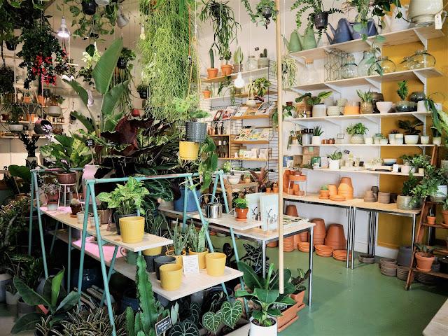 Amsterdam / Atelier rue verte / Wildernis 10 /