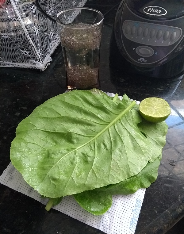 ingredientes do suco verde de couve, limão e chia