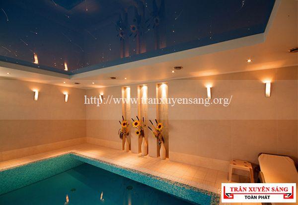 Mẫu trần bể bơi hiện đại 4