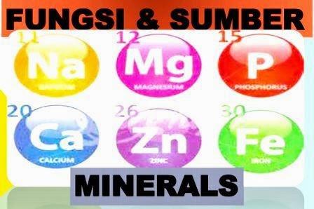 Sumber dan Fungsi Mineral Bagi Manusia