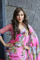 Angela Krislinzki Rogue Movie Fame Telugu Actress in Saree Backless Choli 116.JPG
