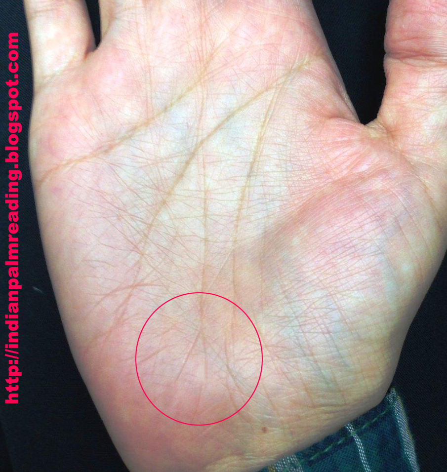 Image Of Small Fork On Fate Line Practical Palmistry